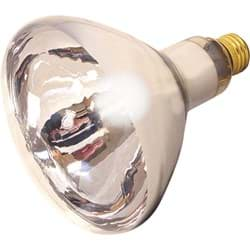 Picture of Satco R40 Incandescent Heat Light Bulb