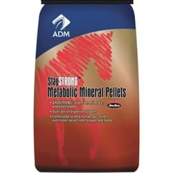 Picture of ADM StayStrong Horse Feed Supplement