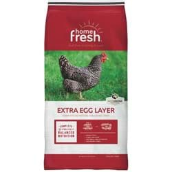 Picture of Laying Chicken Feed