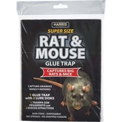 Picture of Harris Rat & Mouse Trap