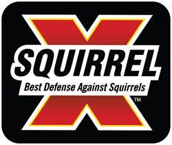 Picture for manufacturer Squirrel-X