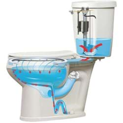 Picture of Mansfield CTK Protector Toilet
