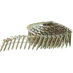 Picture of Grip-Rite Coil Roofing Nail - 1-1/4""