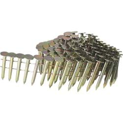 Picture of Grip-Rite Coil Roofing Nail - 1-1/2""