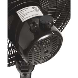 Picture of Best Comfort 16 In. Oscillating Pedestal Fan