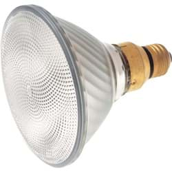 Picture for category Halogen Floodlight Light Bulb