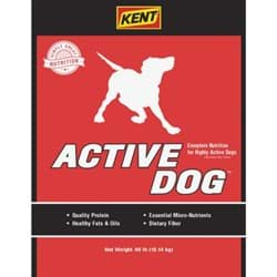 Picture of Kent Active Dog Food