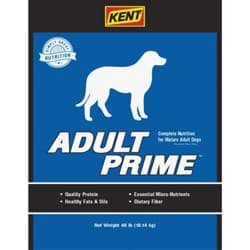 Picture of Kent Adult Prime Dog Food