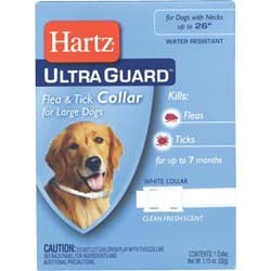 Picture of Hartz UltraGuard Flea & Tick Collar For Dogs