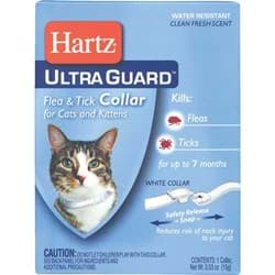 Picture of Hartz UltraGuard Flea & Tick Collar For Cats & Kittens