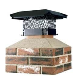 Picture for category Chimney Cap