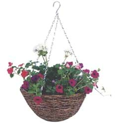 Picture for category Hanging Plant Baskets & Liners